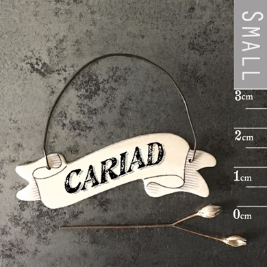 Cariad ribbon tag